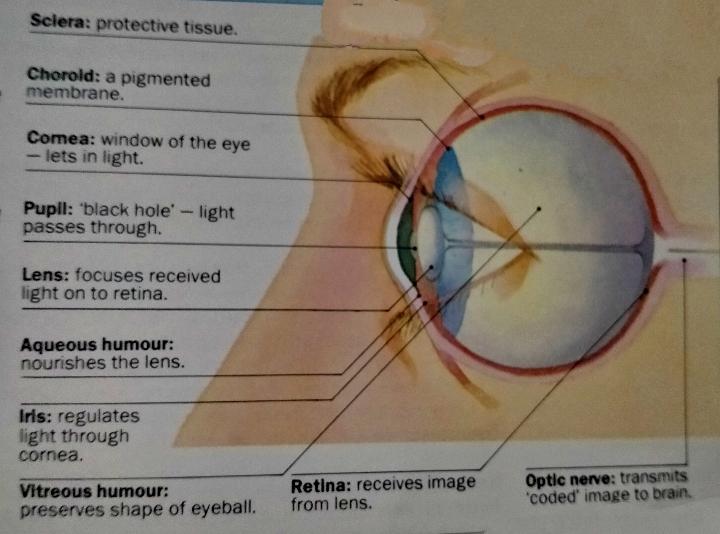 Advanced eye care and eye treatment